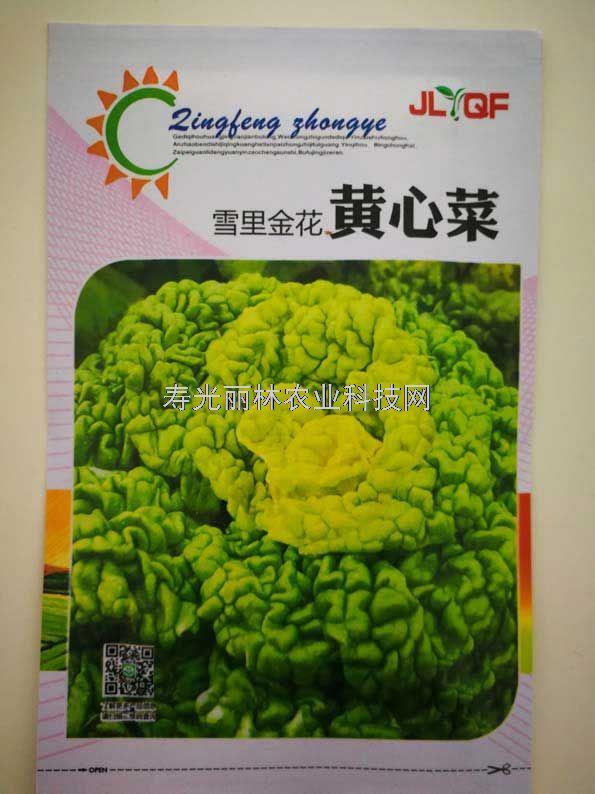 特色蔬菜种子-黄心菜种子-黄芯乌塌菜种子